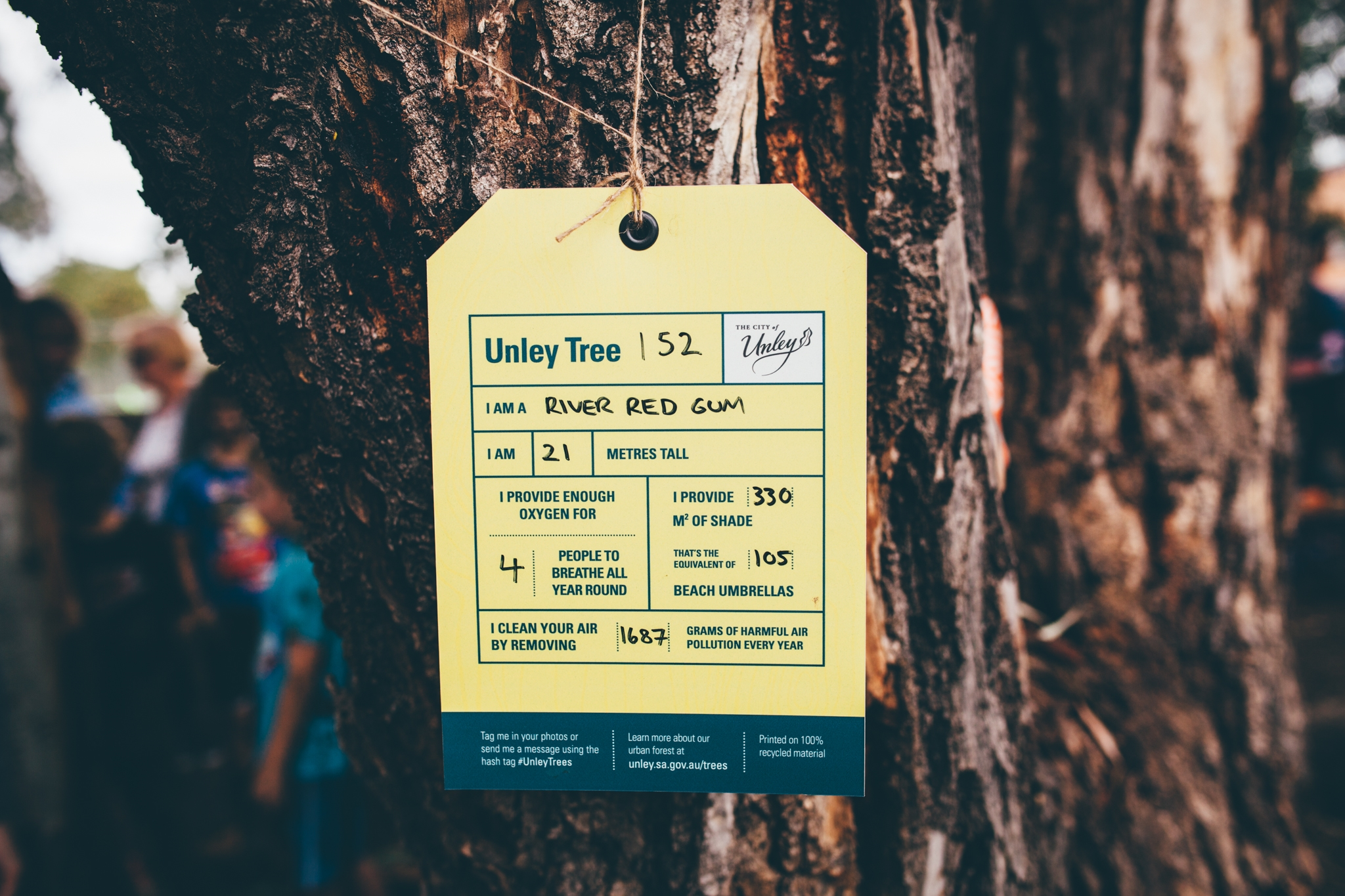 Tree Tag Unley.jpg