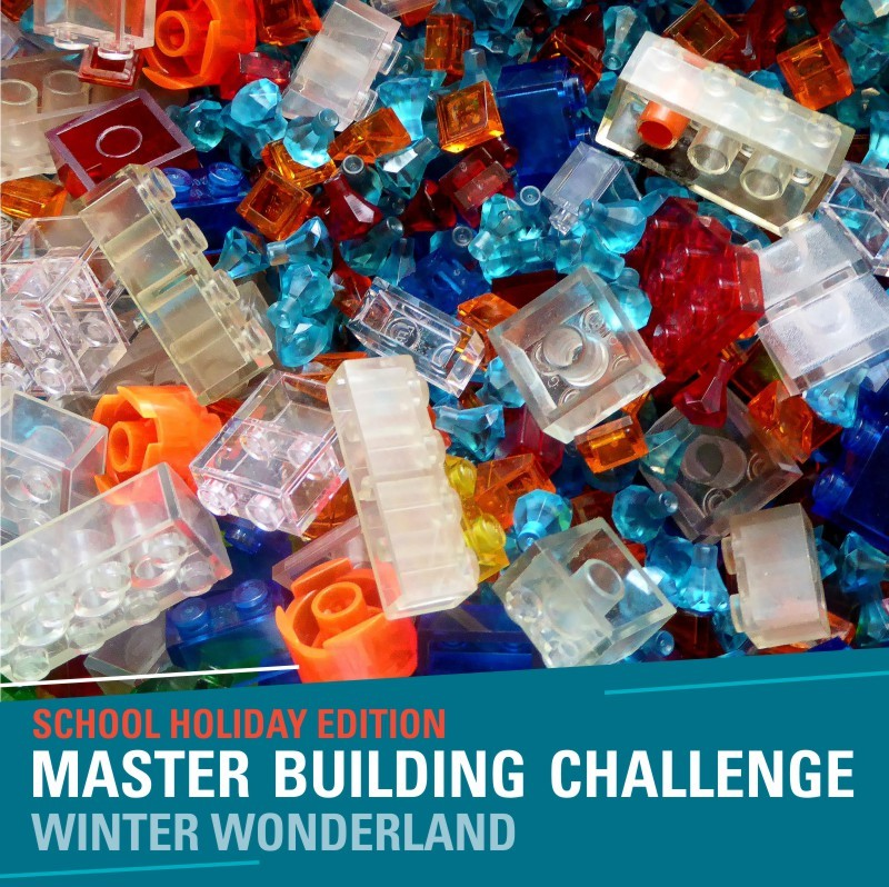 School Holiday Master Building Challenge